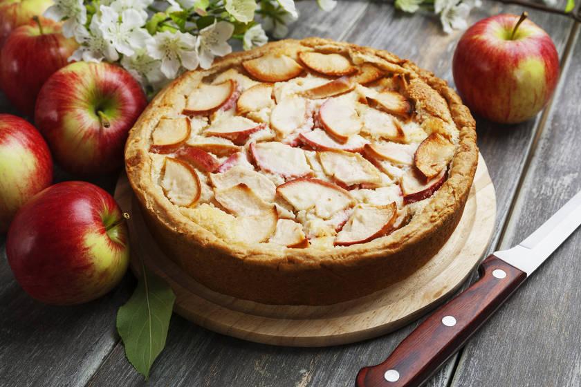 Шарлотка с яблоками — лучшие рецепты
